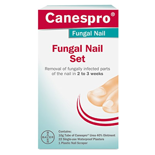 Best Fungal Nail Treatment [August 2019]: What You Need To Know
